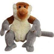 Proboscis-Monkey-(M)