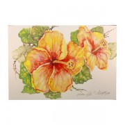 5-Assorted-Cards—Hibiscus