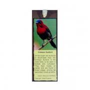 Bookmark—Crimson-Sunbird