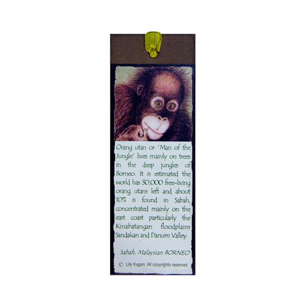 Bookmark—Orang-Utan-(3)