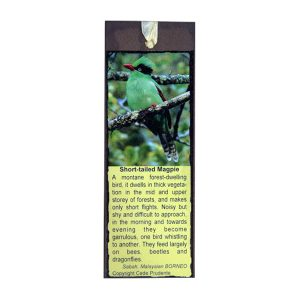 Bookmark---Short-tailed-Magpie