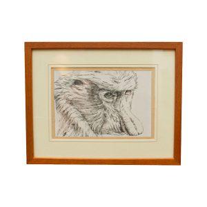 Original-Painting---Assorted-Small-(Proboscis-Monkey)