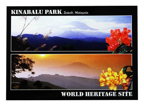 Postcard—Kinabalu-Park