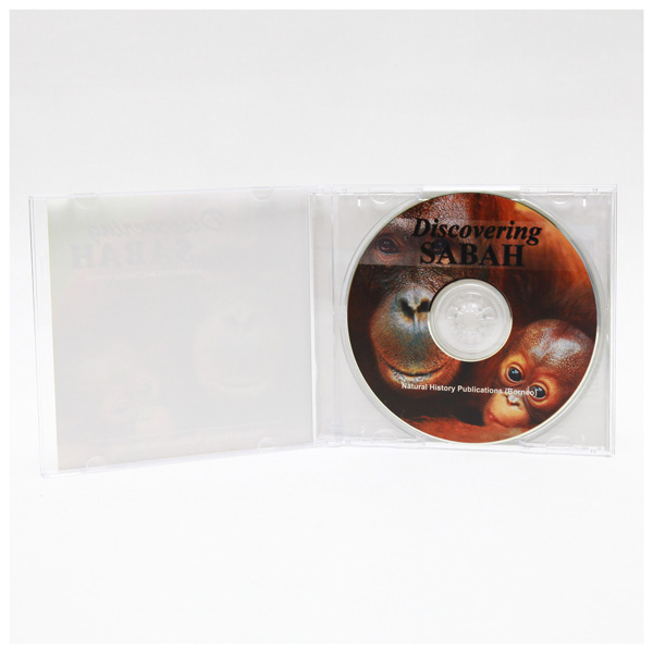 Discovering-CD-inside