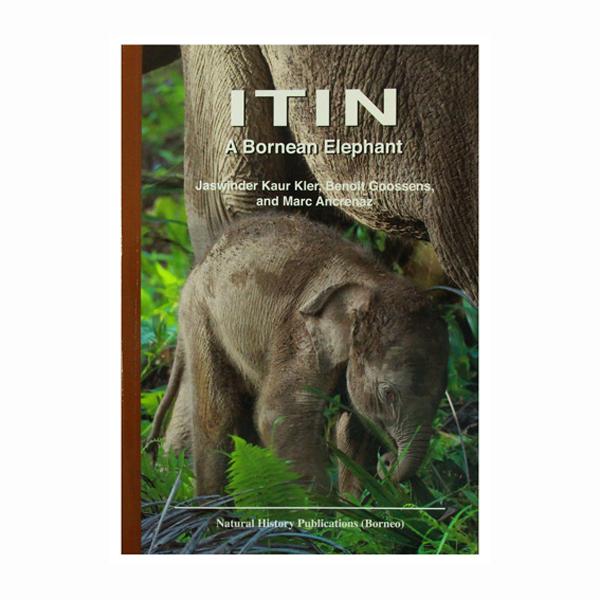 ITIN-A-bornean-Elephant